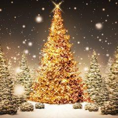Um Natal muito feliz para ti, cheio de Reiki