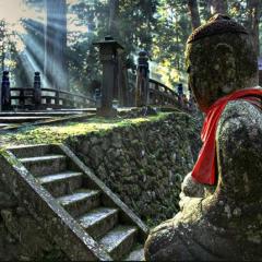 Reiki no caminho do Japão – uma viagem de sonho