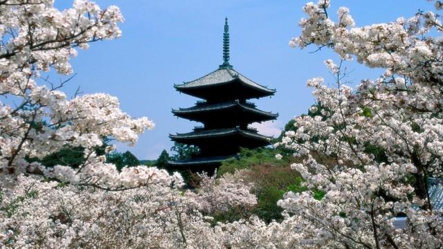 A vida de Mikao Usui segundo a Reiki Ryoho Gakkai – uma introdução do Reiki Ryoho no Shiori
