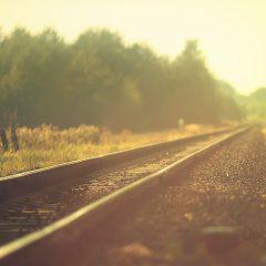 Confio – Cinco princípios para as relações humanas