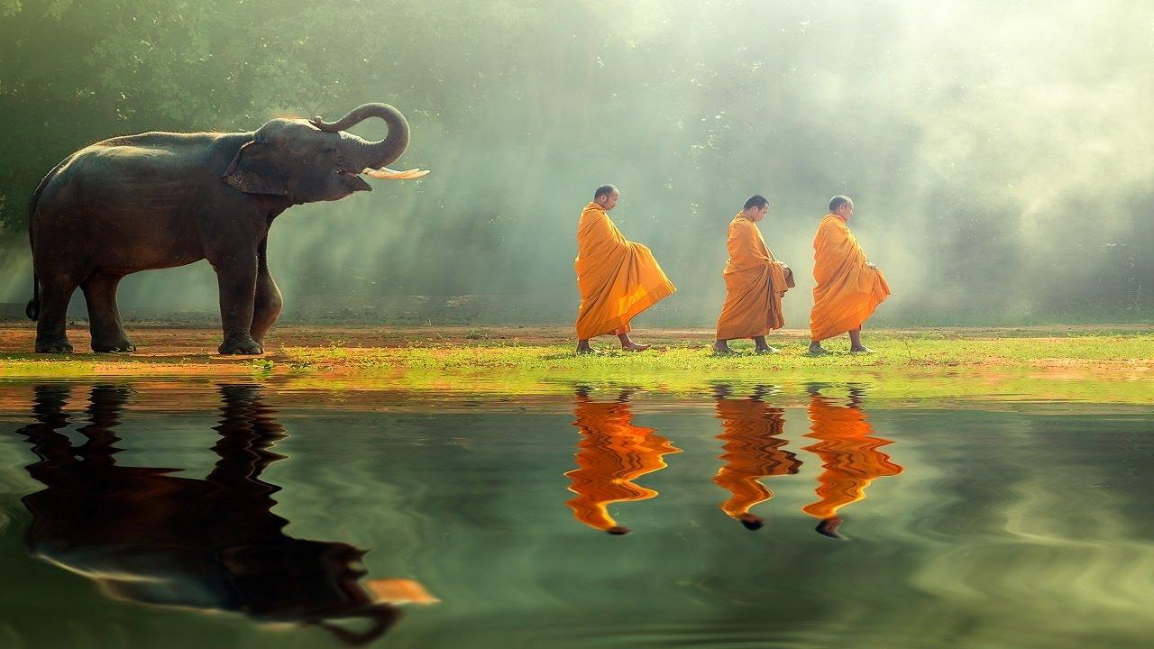 Cinco princípios para observar os chakras
